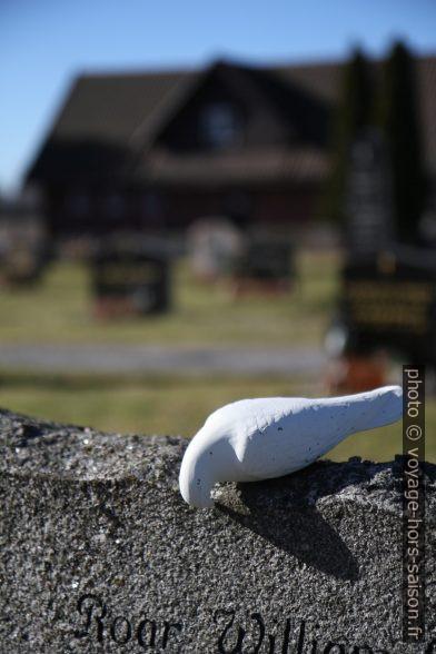 Sculpture de pigeon sur une pierre tombale. Photo © Alex Medwedeff