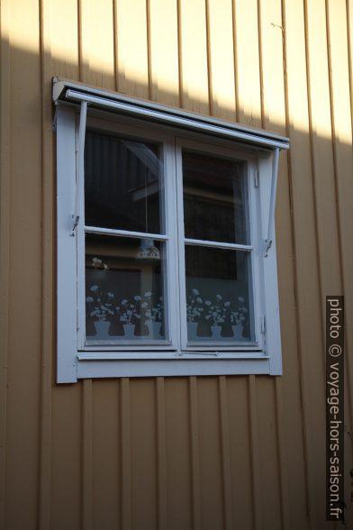 Décors de fenêtre. Photo © Alex Medwedeff