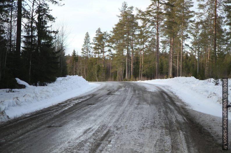 Route non-revêtue près de Lappviken. Photo © Alex Medwedeff