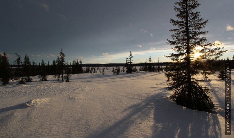 Au bord de la tourbière Itnaáhpi en hiver. Photo © André M. Winter