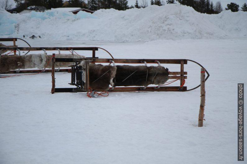 Traîneaux couchés sur le côté pour les fixer contre le vent. Photo © Alex Medwedeff