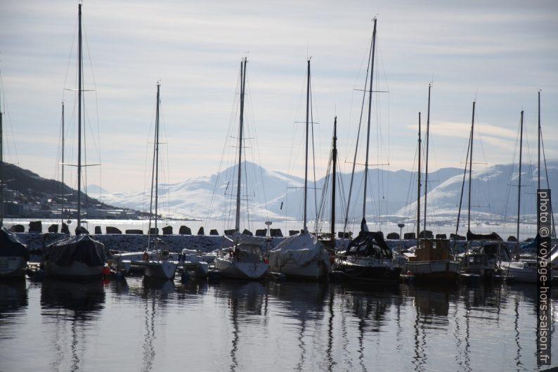Voiliers dans un port de Tromsø. Photo © Alex Medwedeff