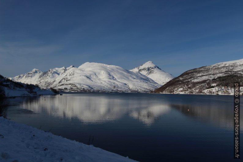 Kaldfjorden, Buren et Store Blåmann. Photo © André M. Winter