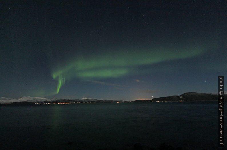 Aurore boréale au dessus de l'Ofotfjorden. Photo © Alex Medwedeff