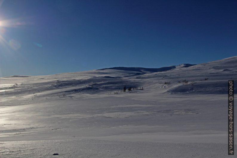 Hiver sur le Saltfjellet