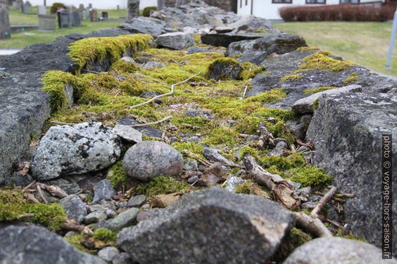 Mur de pierre sèche couvert de mousse. Photo © Alex Medwedeff