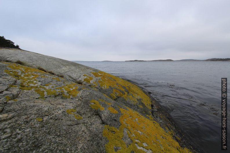 Rochers en bord de mer lissés par les glaciers. Photo © André M. Winter