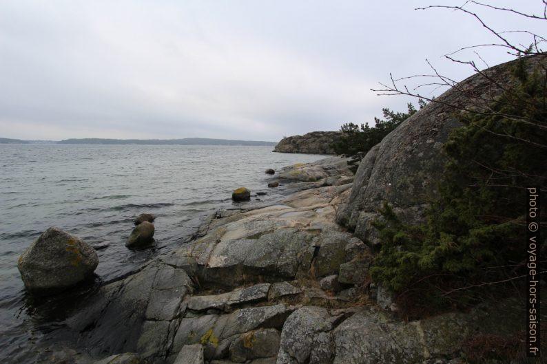 Côte rocheuse sud de Saltö. Photo © Alex Medwedeff