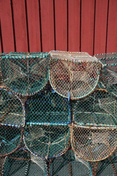 Pièges de homard. Photo © Alex Medwedeff