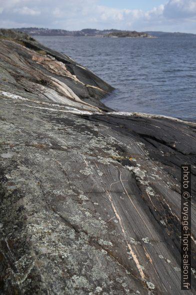 Rochers de la côte rabotés par les glaciers. Photo © Alex Medwedeff