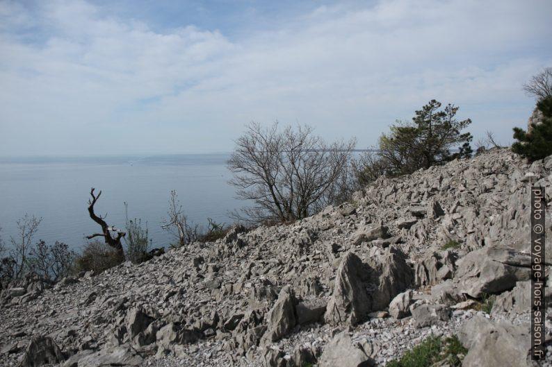 Karst aride de Trieste. Photo © Alex Medwedeff
