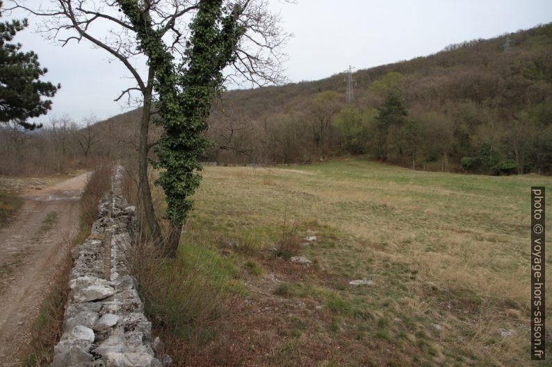 Piste, mur en pierre sèche et champ. Photo © Alex Medwedeff
