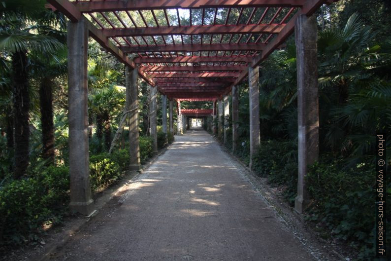 Une pergola du Parco di Miramare. Photo © André M. Winter