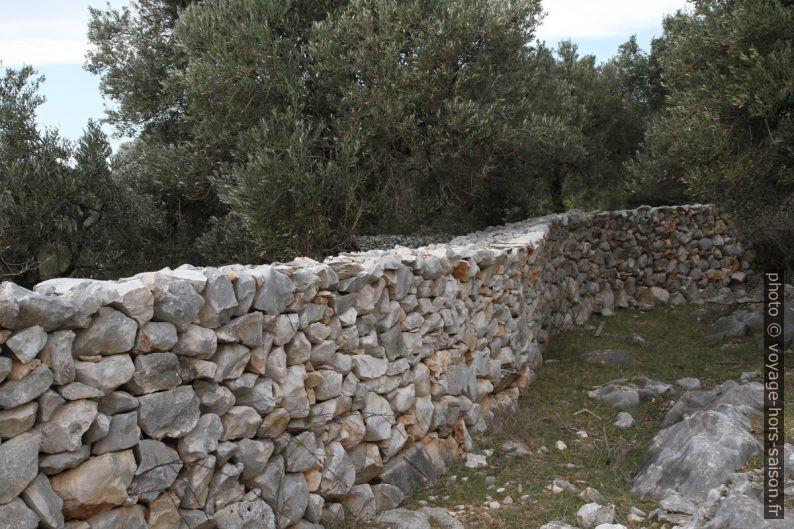 Mur en pierre sèche récent. Photo © Alex Medwedeff