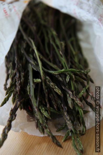 Tiges d'asperges sauvages fraîchement cueillies. Photo © Alex Medwedeff