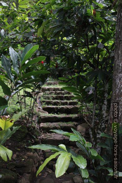 Escalier dans les jardins de la Grivelière. Photo © Alex Medwedeff