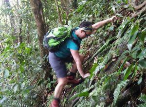 Alex grimpe à l'aide des racines par dessus un abrupt rocheux. Photo © André M. Winter