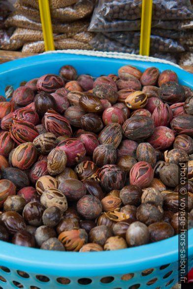 Noix de muscade fraîches. Photo © Alex Medwedeff