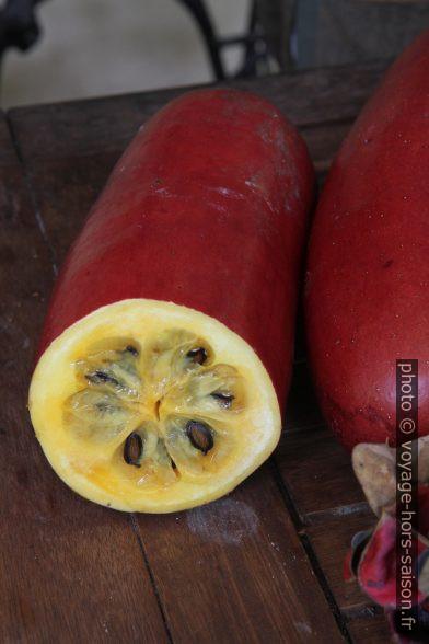 Fruit oblong. Photo © Alex Medwedeff