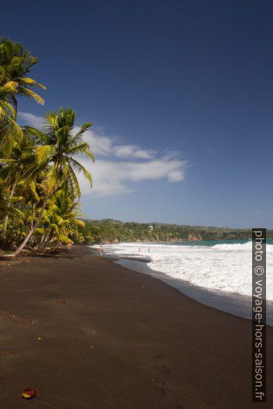 Sable noir de la Grande Anse de Capesterre. Photo © Alex Medwedeff