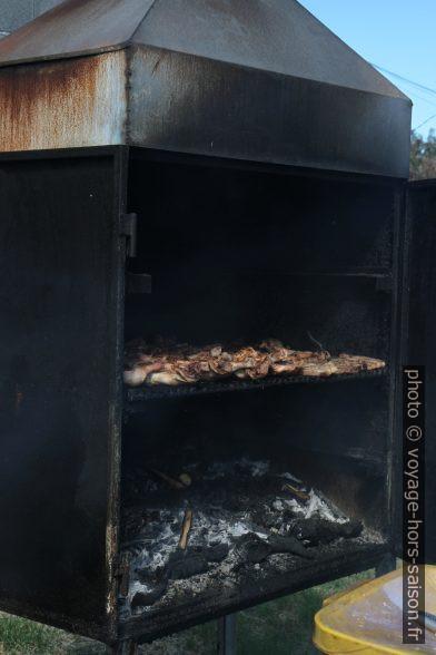 Barbecue de cuisses de poulet. Photo © Alex Medwedeff