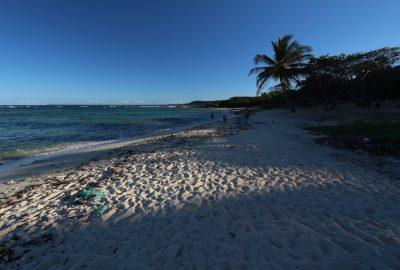 Plage de l'Anse Maurice en fin d'après-midi. Photo © André M. Winter