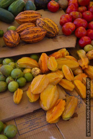 Cabosses de cacao, caramboles, mangues et tomates. Photo © Alex Medwedeff