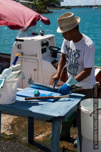 Préparateur de poissons sur le port de Pointe-à-Pitre. Photo © Alex Medwedeff