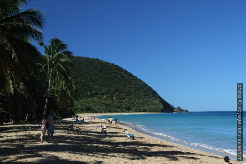 Plage de la Grande Anse. Photo © Alex Medwedeff