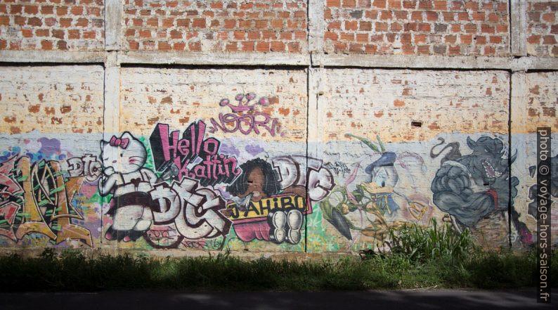 Graffiti de publicités transformées: Hello Kattin, Jahibo, Donald. Photo © André M. Winter