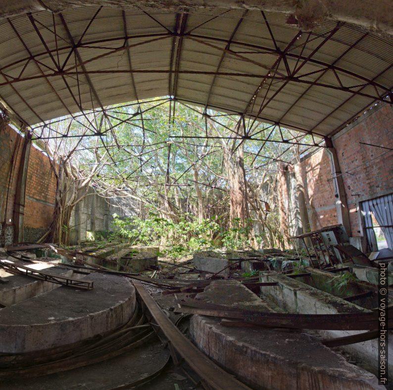 Socles de grands tonneaux dans la ruine de la rhumerie Grosse Montagne. Photo © André M. Winter