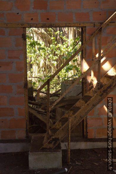 Escalier placé devant une porte. Photo © Alex Medwedeff