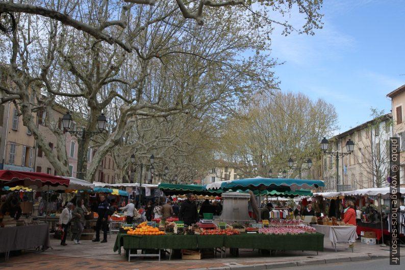 Le marché de Salernes sur le Cours Théodore Bouge. Photo © Alex Medwedeff