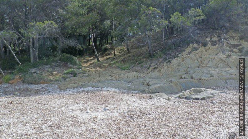 Montée du sentier du littoral de la Plage de la Tripe en direction est. Photo © André M. Winter