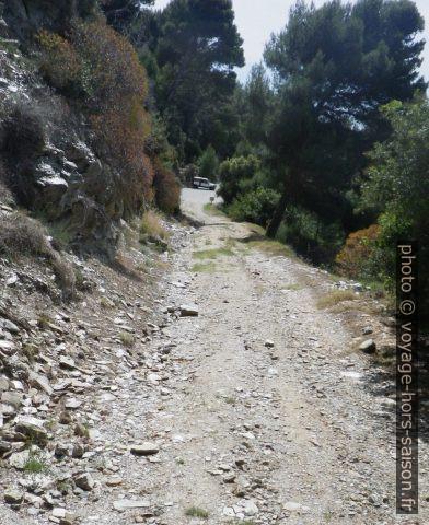 Piste forestière puis route goudronné du Domaine privé du Cap Bénat. Photo © André M. Winter