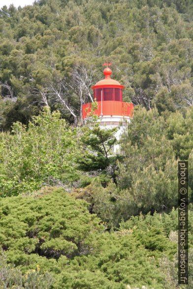 La lanterne rouge du phare du Cap Blanc. Photo © André M. Winter