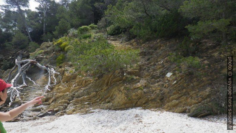 Montée du sentier du littoral de la Plage et Calanque de la Tripe en direction ouest. Photo © André M. Winter