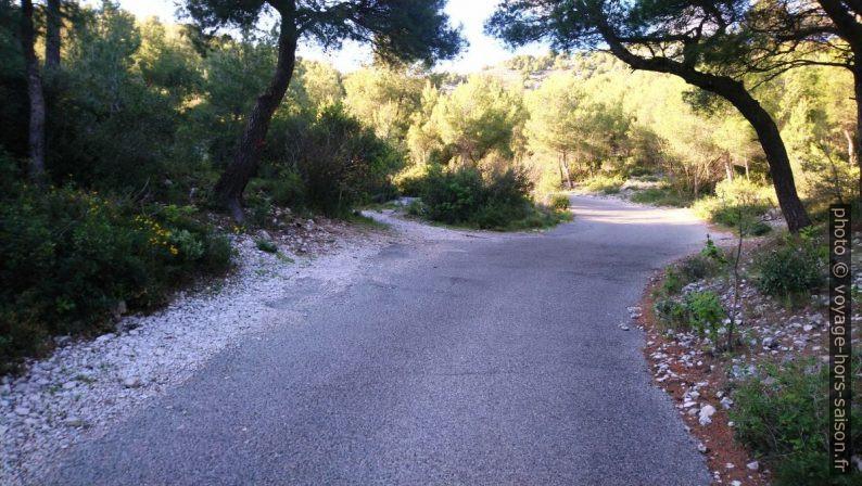 Deuxième bifurcation du chemin de la Route de Morgiou. Photo © André M. Winter