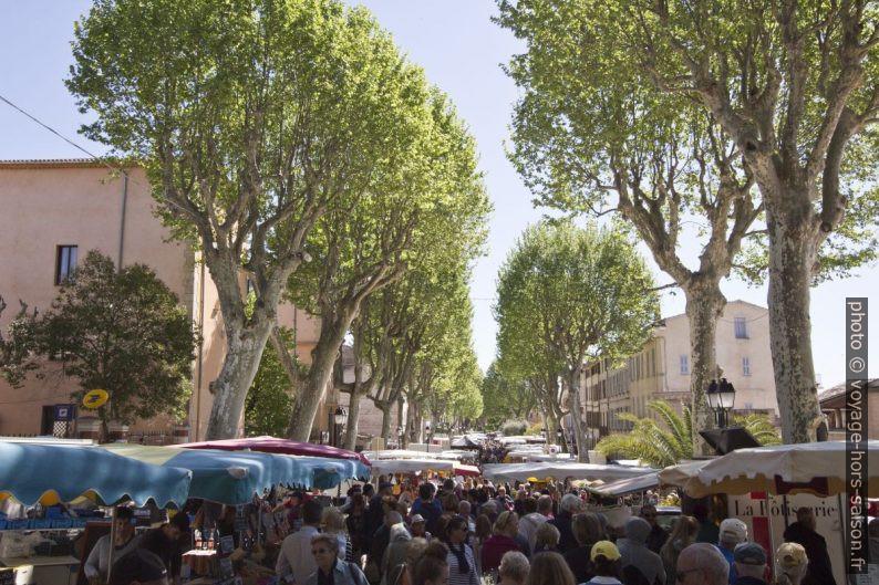 Le Marché de Lorgues sous les platanes du Cours de la République. Photo © André M. Winter