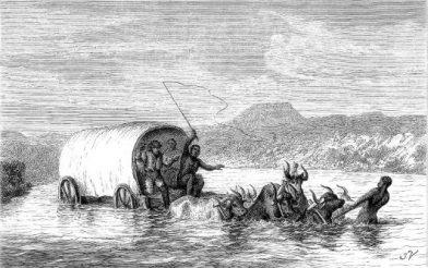 Traversée du Vaal en chariot à bœufs