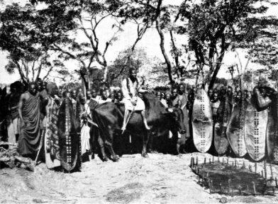Sultan Merere sur son taureau