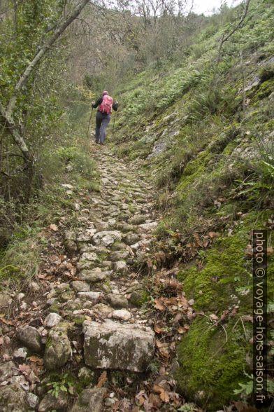 Vieux chemin caladé entre les balises 592 et 584. Photo © André M. Winter