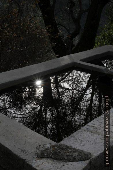 Reflet dans le lavoir au nord de Peillon. Photo © Alex Medwedeff