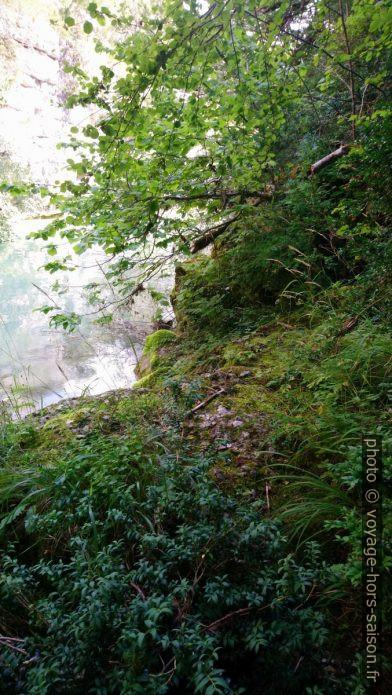 La marche rocheuse est couverte de mousses glissantes. Photo © André M. Winter
