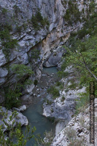 L'Estoublaisse dans les Gorges de Trévans. Photo © Alex Medwedeff