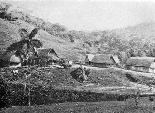 Une hacienda dans la jungle bolivienne
