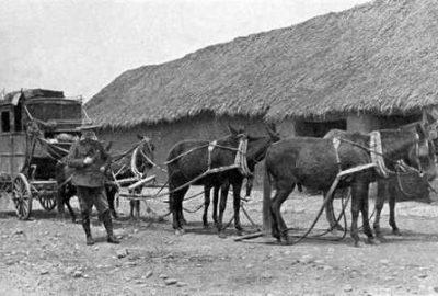 Diligence bolivienne