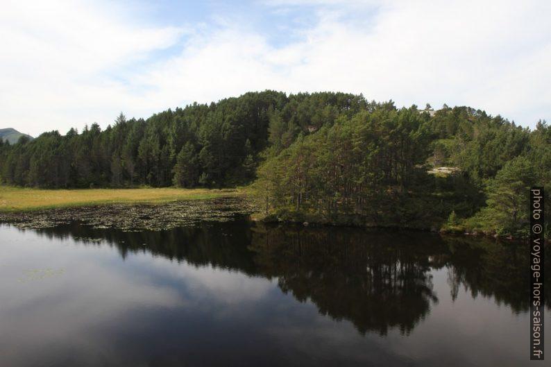 Le lac Forklevatnet sur Skongenes. Photo © Alex Medwedeff