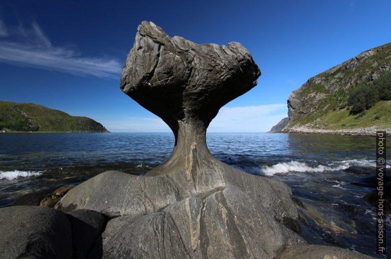 Le Kannestein de Vågsøy recoupé avec l'horizon. Photo © André M. Winter