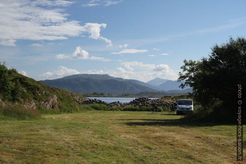 Notre Trafic seul sur un pré de Lysøy. Photo © Alex Medwedeff